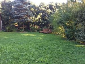 Gartenseitige Wohnung in zentraler Lage